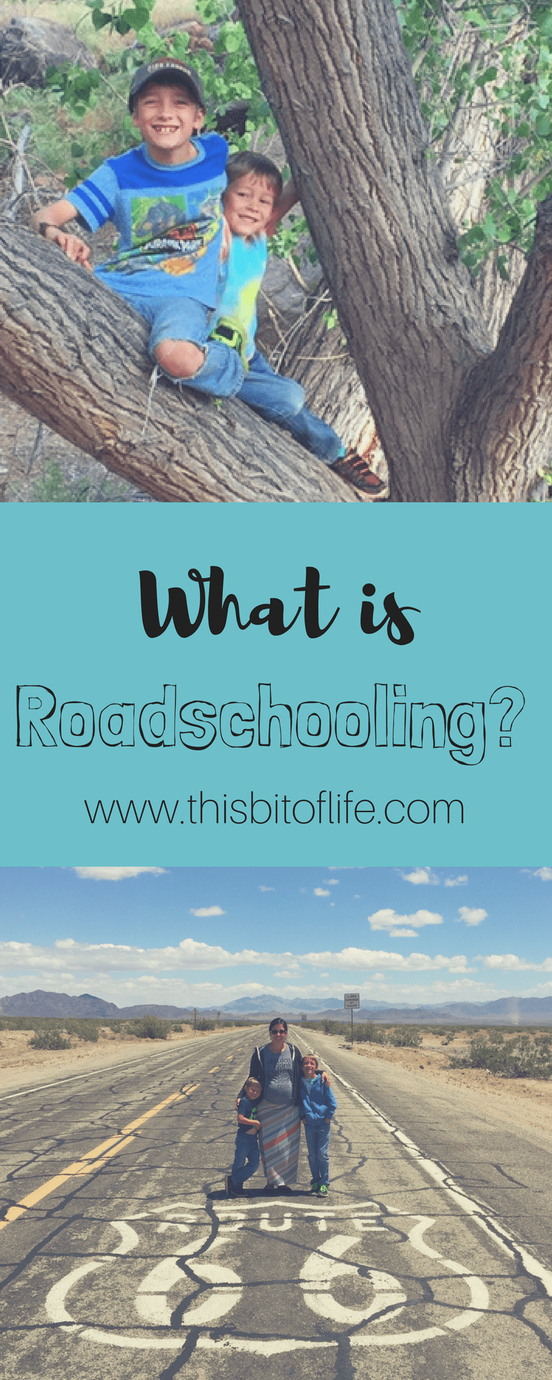 What is roadschooling? Real life learning in the real world for homeschoolers #roadschooling #homeschool #travel
