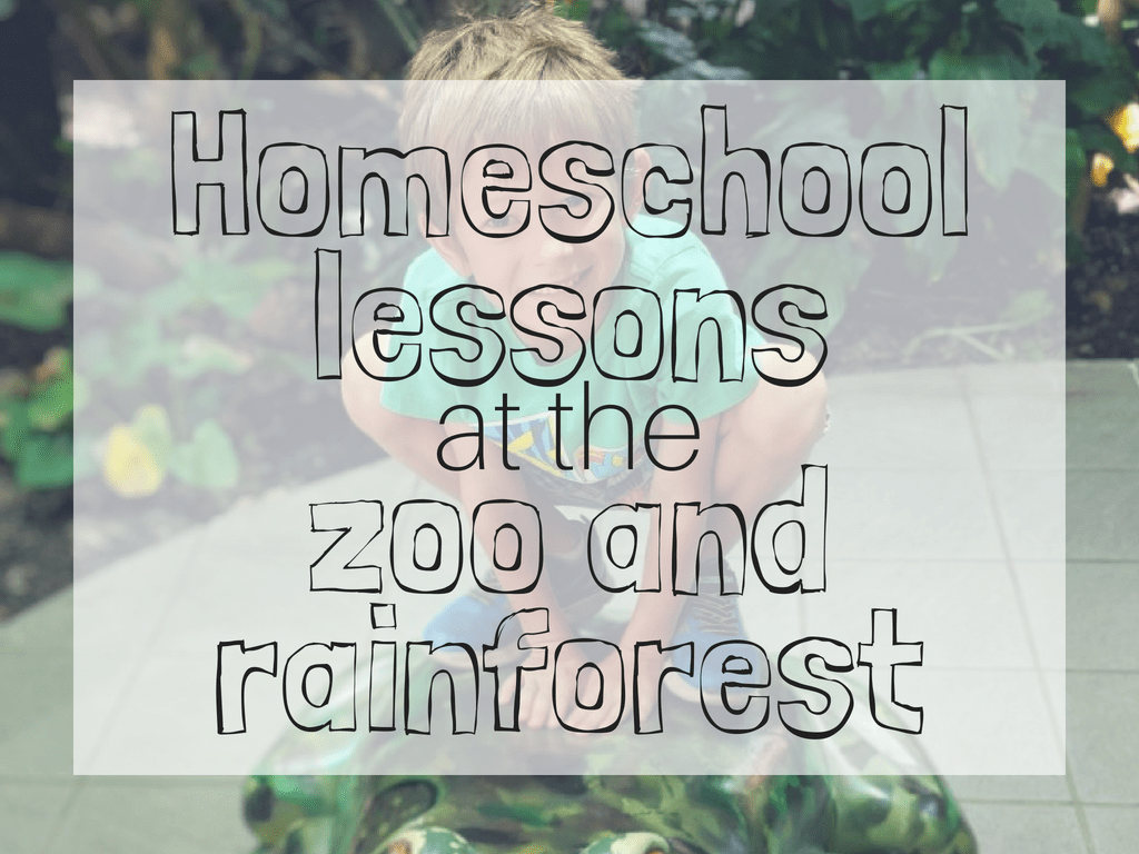 homeschool lessons at the zoo and rainforest