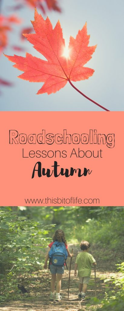 Roadschoolng Lessons About Autumn. Roadschooling can bring your homeschool lessons places you never would have seen before! Autumn is the perfect time to travel to see trees and leaves change color. And you can turn it into a science lesson so easily! Here are some ways you can create roadschooling lessons in autumn. #roadschooling #homeschooling #homeschool #autumn #freebies #freeprintable #freelesson