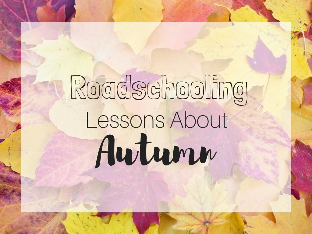 roadschooling lessons about autumn