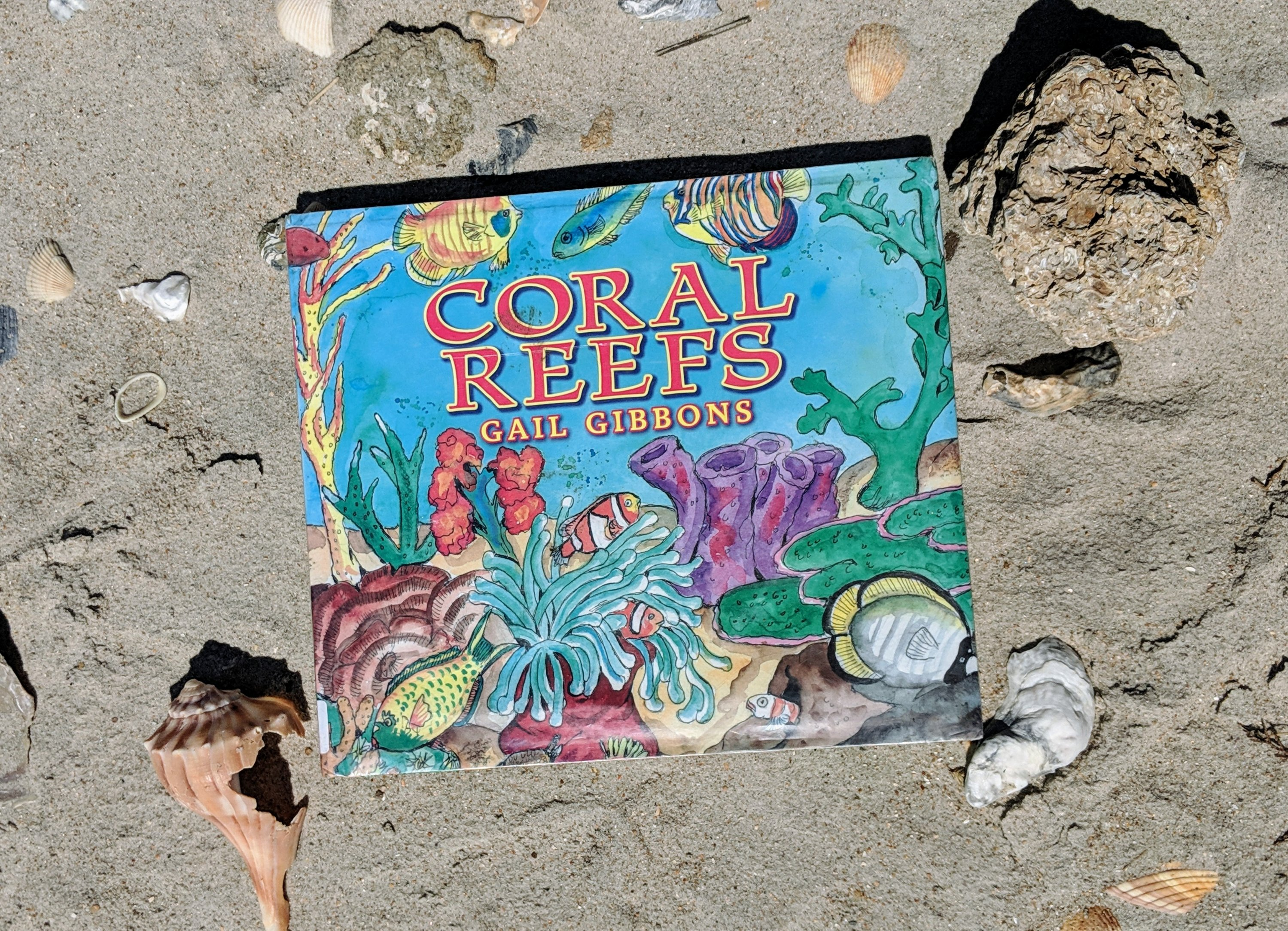 8 kid's books about the ocean coral reefsq