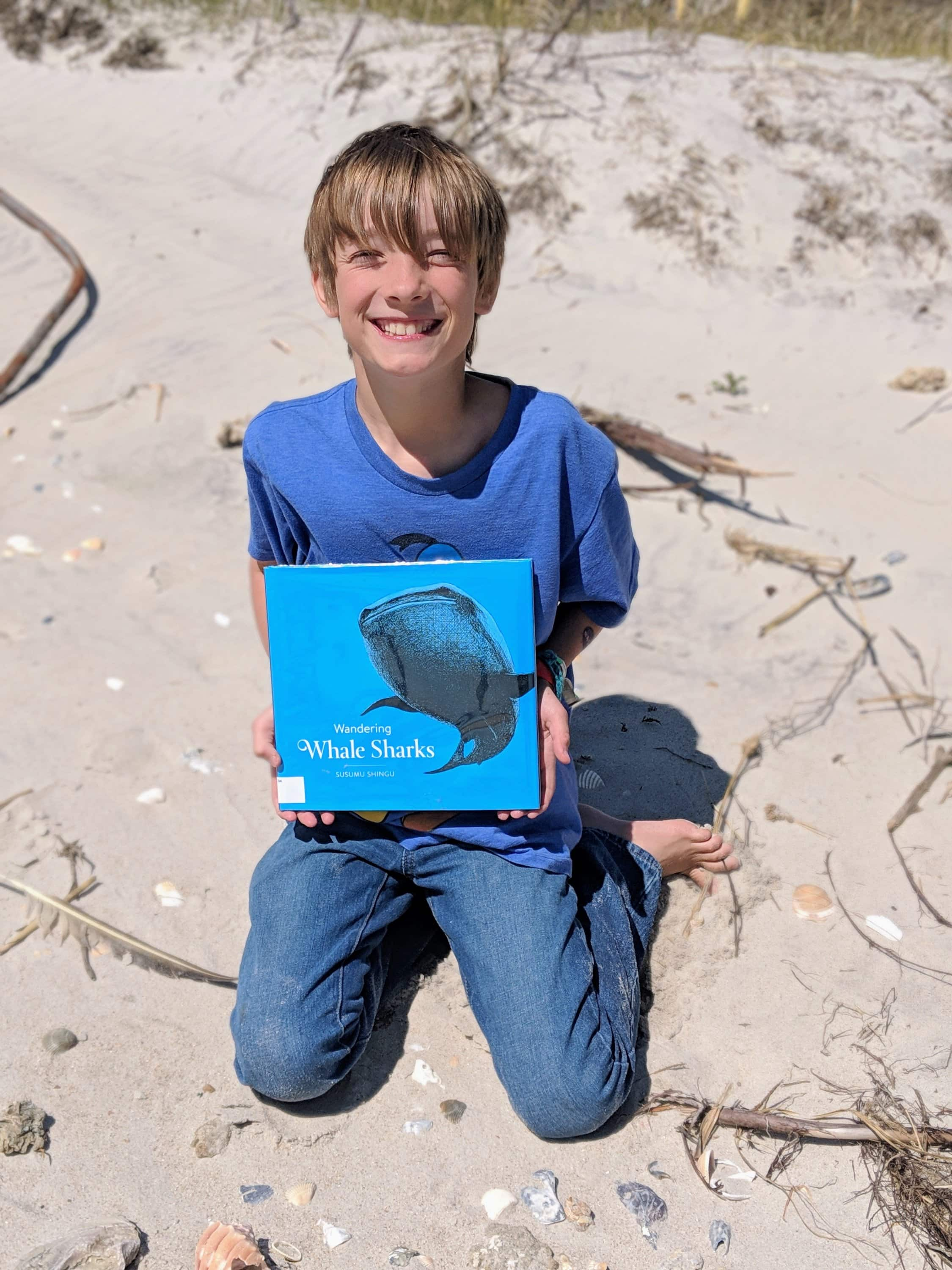8 kid's books about the ocean whale sharks