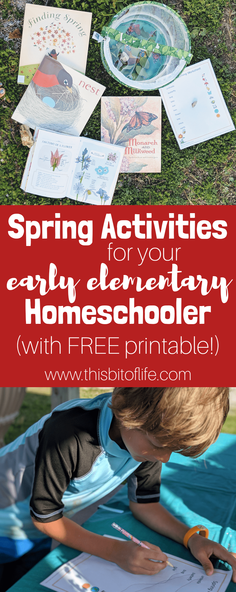 Spring has sprung! Here are some spring activities for your early elementary homeschooler. Spring books, butterfly observation, flower identification, and a FREE printable! #freeprintable #sprintactivities #homeschooling #springhomeschooleractivities
