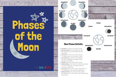 Unit Study About the Moon. For this moon study we visited books about the moon, STEM moon landers, and Oreo moon phases! #freeprintable #moonstudy #phasesofthemoon