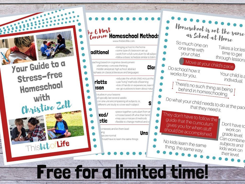 Free Homeschooling Ebook. Learn how to homeschool with this ebook, free for a limited time!