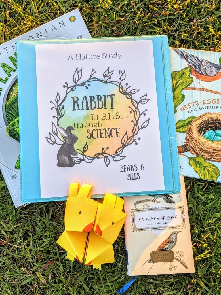 Rabbit Trails through Science Beaks and Bills is a Charlotte Mason Inspired science lesson with copywork, real books, hands on activities, vocabulary, and lots of rabbit trails into learing!
