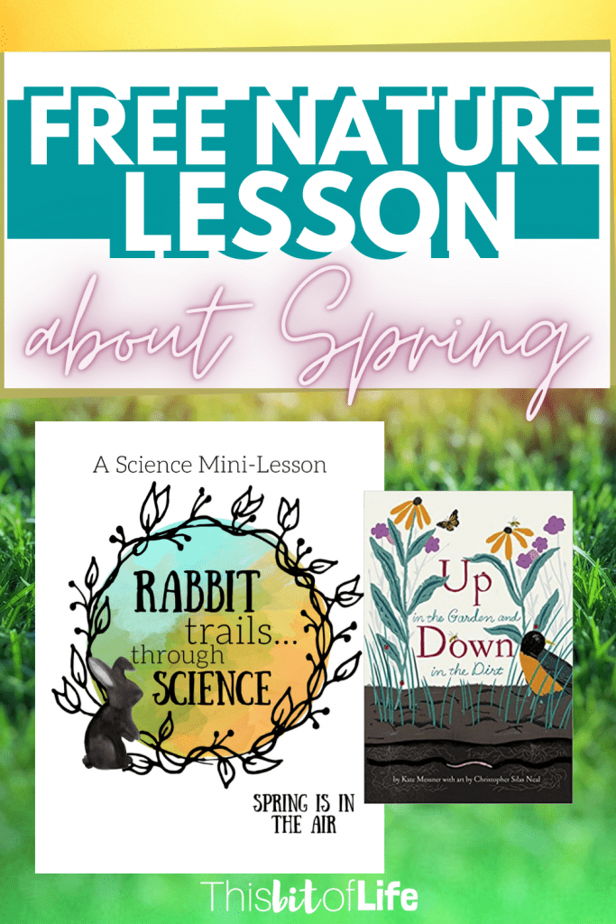 A free nature lesson about spring from Rabbit Trails through Science. Go up in the Garden and Down in the Dirt with this new free nature lesson. Learn all about spring in your homeschool. Free homeschool nature lesson. Free lesson about spring. Free spring unit study. Free homeschool unit study. Free homeschool nature study. #homeschool #naturestudy