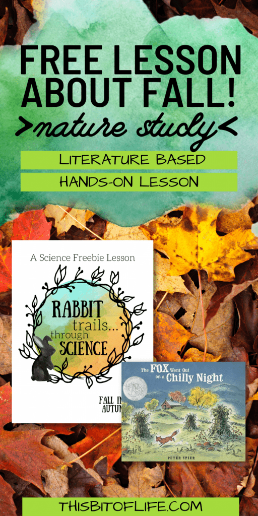 Fall in love with autumn with this free lesson about fall! This is my very favorite time of year. The temperatures start to cool off, the leaves start to change gorgeous colors, pumpkins, corn mazes, apple cider... Oh, my heart! Now, you can include the joys of fall in your home with this literature based science lesson. Free nature study about fall. Free science lesson. Free homeschool science lesson. Charlotte Mason nature study. Literature based nature study. Literature based science lesson. Free hands on science lesson. #homeschool #sciencelesson